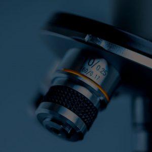 Curso Internacional de Microscopia de Luz Polarizada
